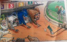 Találó karikatúra az agárversenyekről  Agárversenyek Ausztráliában: évi 17.000 áldozat!  #kutya #dog #ausztrália #australia #agár #greyhound #verseny #race #greyhoundrace #kutyabaráthelyek #kutyabarathelyek