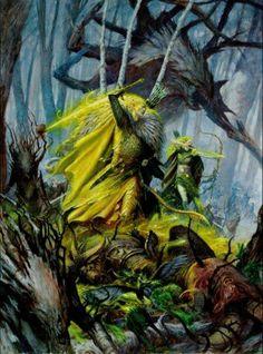 Wood elves holding back the beastmen
