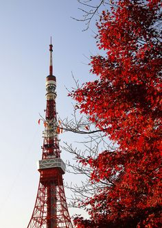 Tokyo tower, Japan- been there!