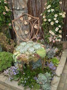 Succulent garden in a chair