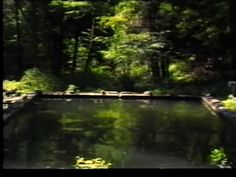 1979-THE REFLECTING POOL by Bill Viola on Vimeo  **This is one of my all time favorite works of art.**