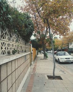 we just have had enough of us.  30.03.2016  #scl #chile #folk #picoftheday #photooftheday #vsco #f64aa #thecoolmagazine #street #autumn