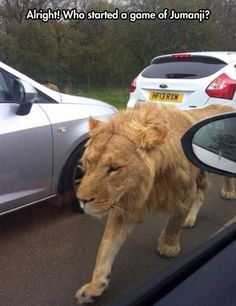 Who Started a Game of Jumanji?