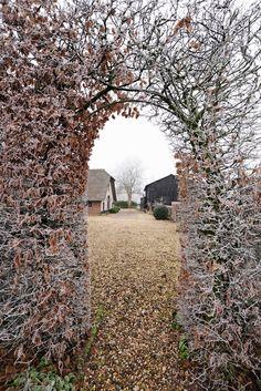 wintertuin, frozen , beukenhaag, foto: Sietske de Vries