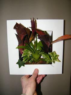Comment faire un cadre végétal ?