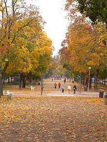 Hameenpuisto park is over 1 kilometer long and it is located in the center of Tampere - Hämeenpuistoon yli kilometrin pituinen esplanadityyppinen puistoväylä, joka kulkee Tampereen ydinkeskustan länsilaitaa Näsinpuistosta Eteläpuistoon.