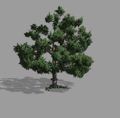 Tree_alan-2 3d model free