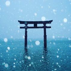 雪が舞い散る白髭神社  #滋賀 #白髭神社 #琵琶湖 #しがトコ #雪 #雪景色 #雪ボケ #玉ボケ #玉ボケ写真部 #landscape #けしからん風景 #誰かに見せたい景色 #鳥居 #sonyalpha #α7 #japan_of_insta #bestjapanpics #special_post #japanigram #lovers_amazing_group #photo_travelers #art_of_japan #photo_shorttrip #写真好きな人と繋がりたい #写真撮ってる人と繋がりたい #カメラ好きな人と繋がりたい #写真好きな人と繋がりたい #写真撮ってる人と繋がりたい #写真好き #lovers_nippon #bestjapanpics #special_post #Loves_nippon #japan_photo_now #art_of_japan #lovers_amazing_group #photo_jpn #pics_jp #jp_gallery #photo_travelers