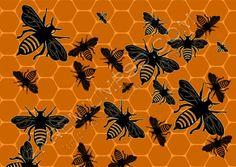 honey bee hive   Tags: hive , honey bee , psd image of honey bee hive wallpaper ...