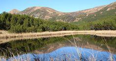 Озеро Верхнє знаходиться в Рахівському районі на висоті більше 1600 метрів над рівнем моря. Чиста, мінералізована вода наче віддзеркалює...