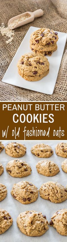 These peanut butter and oatmeal cookies packed with chocolate chips are the perfect mix of crunchy and chewy and make for an amazing breakfast or dessert.
