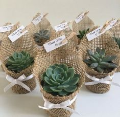 Succulent wedding favors - Succulent favors for weddings, birthdays, christenings, baby showers or any special occasion weddingfavors wedding favors ad succulent Wedding Favors And Gifts, Cool Wedding Gifts, Burlap Wedding Favors, Burlap Wedding Decorations, Wedding Souvenir, Bridal Gifts, Wedding Invitations, Succulent Wedding Favors, Succulent Gifts