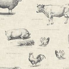 Featuring a beautiful sketched illustration of farm animals set on a natural background, this animal fabric will give your home a rural finish. Natural Background, Cushion Fabric, Farm Yard, How To Dye Fabric, Haberdashery, Soft Furnishings, Country Life, Farm Animals, Cotton Fabric