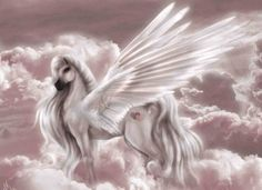 Do Pegasus and Unicorns represent two mythical creatures.or are they the same mythical creature shown in two different stages of their life cycle? Since they are mythical it`s up to you to decide Pegasus, Unicorn Images, Unicorn Pictures, Unicorn Fantasy, Unicorn Art, Fantasy Art, Magical Creatures, Fantasy Creatures, Arte Equina