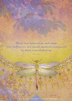 What Lies ©Angi & Silas www.Duirwaigh.com