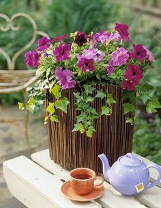 Tea In The Garden. Love the look of petunias & ivy in the vase made of sticks or willow branches.