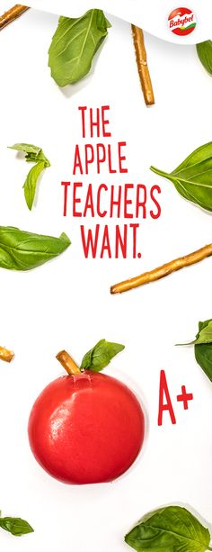 New school year, new teacher. Make a great first impression with a delicious snack of Mini Babybel cheese, pretzels and basil. Back To School Teacher, New School Year, School Fundraisers, School Snacks, Art For Kids, Crafts For Kids, Fall Crafts, Babybel Cheese, Yummy Snacks