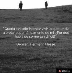 #Hesse #Demian #Citas #Frases #Literatura #LiteraturaAlemana