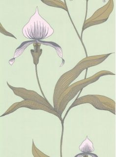 Product: 664028-Orchid