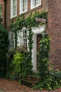 Townhouse with the ivy. Perfection.