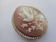 Lovely Old Antique Victorian 14k Gold, Seed Pearl And Shell Cameo With A Bird Motif Brooch