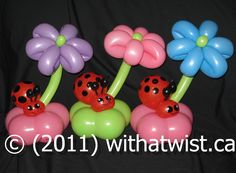 lady bug balloon twisting | With a Twist Balloon Creations Calgary and Airdrie Balloon Artist ...