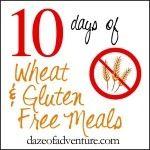 Gluten free crockpot meals | Daze of Adventure