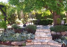 Designs For Gardens Mary Wattis Brown Native Garden At The Uc Davis Arboretum Classic Planting For A Classic Summer In The Country Planting Landscape Stairs, Landscape Bricks, Garden Landscape Design, Back Gardens, Small Gardens, Home Design, Design Ideas, North Garden, Australian Native Garden