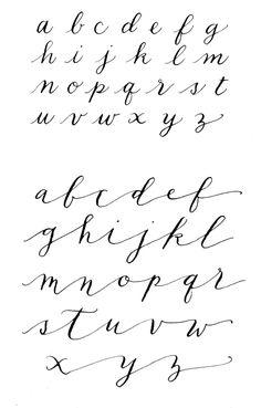 palomino_alphabets_oct2013 | portlandpalomino | Flickr