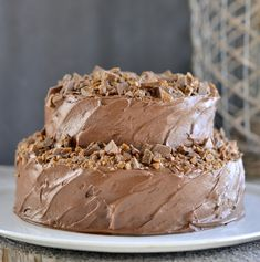 Mocha New Years Cake w/ Chocolate-Cream Cheese Frosting : vakrehjem Chocolate Cream Cheese Frosting, Chocolate Cake, Cake Recipes, Dessert Recipes, New Year's Cake, Norwegian Food, Gateaux Cake, Something Sweet, No Bake Desserts