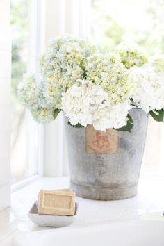 - zinc - hortensia - ambiance - (via Dustylu Lifestyle Photographer» blog)