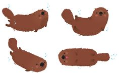 Sea_Otter_4_Poses_signed_lores.jpg