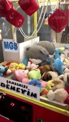 Cat inside a crane game machinehttps://i.redd.it/hmual6tp4er01.gif