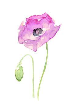 Flower Purple Poppy Floral Watercolor Art Print