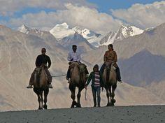 """Süße Marillen auf dem Dach der Welt - Ganz im Norden Indiens liegt mitten im Himalaya ein kleines irdisches Paradies: Ladakh, auch """"Klein-Tibet"""" genannt. Für ein Klosterfest lohnt sich ein Besuch dort oben ganz besonders. Zum Reisebericht: http://www.nachrichten.at/reisen/Suesse-Marillen-auf-dem-Dach-der-Welt;art119,1746706 (Bild: Oberzill)"""