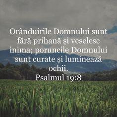 Alba, Bible Verses, God, Quotes, Psalm 37, Bible, Verses, Dios, Quotations