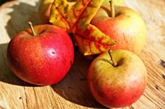 Get Excited for the Big Red Apple Festival! Diy Pumpkin, Pumpkin Puree, Pumpkin Recipes, Apple Plant, Easy Weight Loss, Lose Weight, Apple Help, Apple Festival, Apple Health Benefits