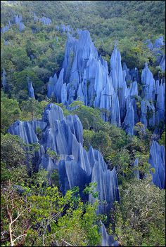 The Pinnacles, Mulu National Park, Borneo, Malaysia | ©Manuel Beers Gunung Mulu National Park, on the island of Borneo, is the most studied tropical karst area in the world. The park is important both for its high biodiversity and for its karst features. It is dominated by Gunung Mulu, a 2,377 m-high sandstone pinnacle, and at least 295 km of explored caves provide a spectacular sight and are home to millions of cave swiftlets and bats.