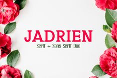 Jadrien Serif Sans Duo 5 Font Pack Creativetacos Other Fonts Cool Fonts, New Fonts, Slab Serif, Serif Font, Silhouette Cameo Files, Font Packs, Free Fonts Download, Font Free, Web Layout