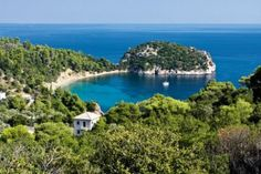 Stafilos at North Aegean Island of Skopelos Thomson Holidays, Places In Greece, Greek Islands, World Traveler, Your Smile, The Good Place, Explore, Water, Holiday Fashion