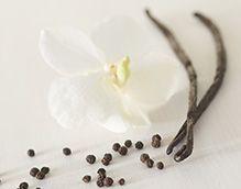 Brighter World by Partylite - Vanilja & mustapippuri (yrttimetsä). Lumoudu Madagaskarin kylissä kasvatetun ja kuivatetun luonnollisen vaniljan makeudesta. Mustapippuri, metsä ja myski tuovat tuoksuun eksotiikkaa.