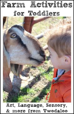 A roundup of farm-themed activities for toddlers from Twodaloo- includes art, language, sensory play, and more!