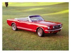 Mustang '66  Want, Want, Want!