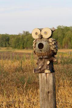 Owl Birdhouse by triciadyke on 500px