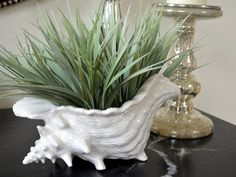 Vintage Ceramic White Conch Shell Planter Vase  Large by modclay, $34.00