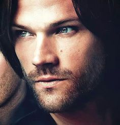 Jared... Sorry I saw this and literally cooed like a bird. Wow he's pretty.