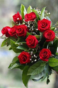 Precious Tips for Outdoor Gardens - Modern Flowers Gif, Red Flowers, Red Roses, Beautiful Flowers, Beautiful Flower Arrangements, Floral Arrangements, Garden Mushrooms, Rose Crafts, Corporate Flowers