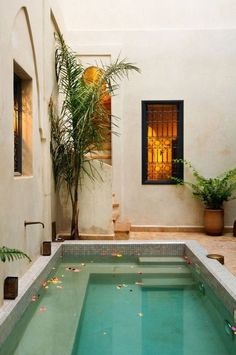 Piscina pequeña en patio pequeño Kleiner Pool in kleiner Terrasse Small Backyard Pools, Indoor Pools, Small Pools, Outdoor Pool, Small Indoor Pool, Lap Pools, Backyard House, Dipping Pool, Piscina Interior