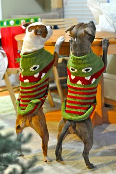 my APBT absolutely refused to wear any type of jacket or blanket, no matter how cold the weather was but i love the look of these sweaters!!!