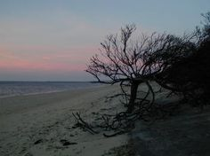 Cape May's Ghosts and Legends, A pirate's treasure and a Hound from Hell.